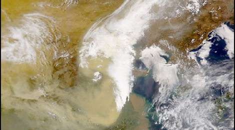 Gobi Dust Sustains Pacific Blooms