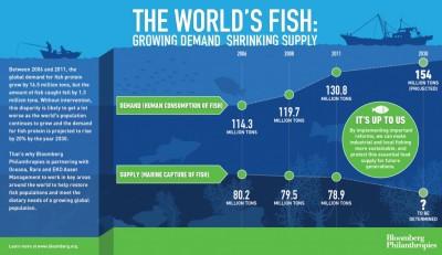 Bloomberg Foundation Dedicates $53 Million To Restore Ocean Fish